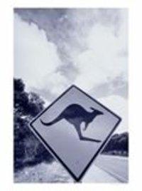 Kangaroocrossingsignaustraliaphotographi_2